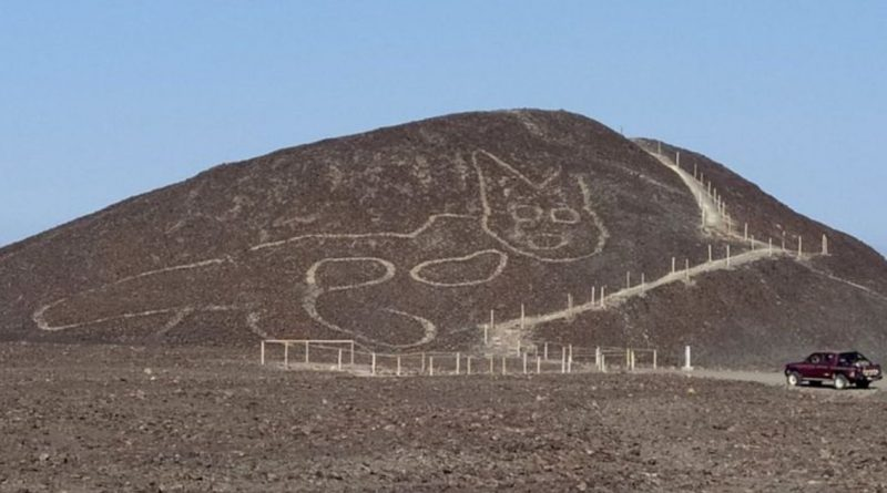 2,000 Year Old Cat Geoglyph Discovered Among Peru's Nazca Lines