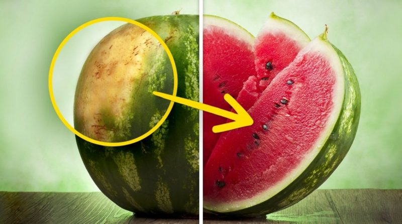 5 Tips From Farmers On How To Pick The Perfect Watermelon