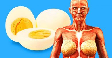 9 Health Benefits Of Eating 2 Eggs Per Day