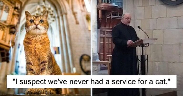 Cat Who Lived In A Church Dies, Church Gives Her An Entire Memorial Service