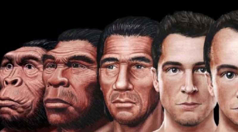 This Is How The Human Face Might Evolve In The Future