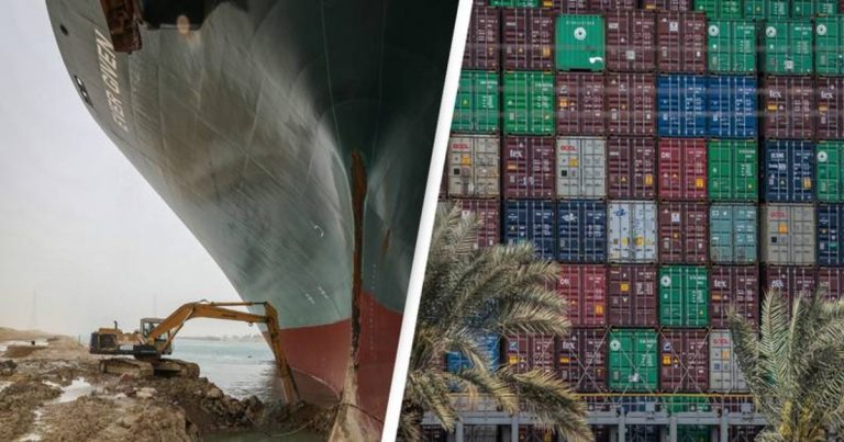 Animals Trapped In Ships Blocking The Suez Might Starve If Situation Lasts Longer