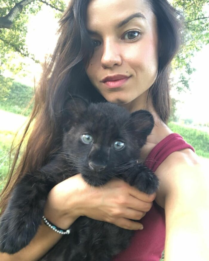 Abandoned panther live with humans