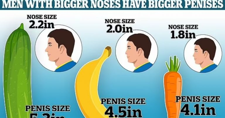Study Reveals That Men With Bigger Noses Have Bigger Penises