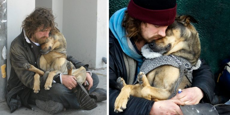 Photos Proving That Humans And Dogs Share The Greatest Love