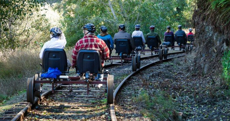 Tourists Can Now Pedal Through California's Redwood Forest On Railbikes