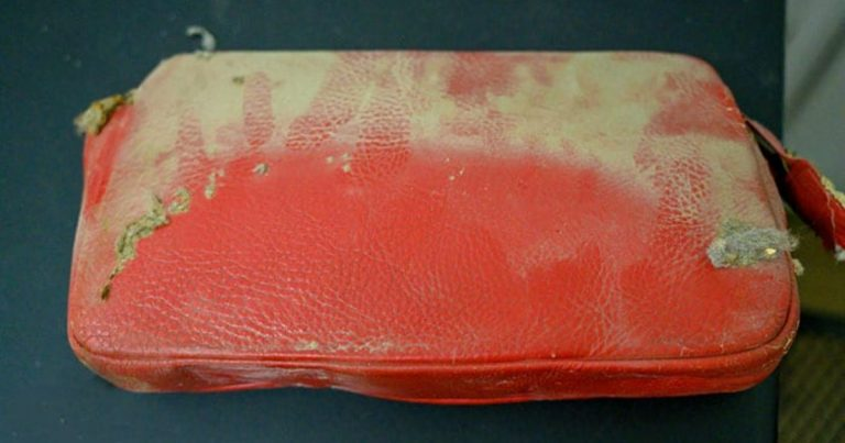 Purse Lost During 1950s Becomes An Unpredicted Time Capsule