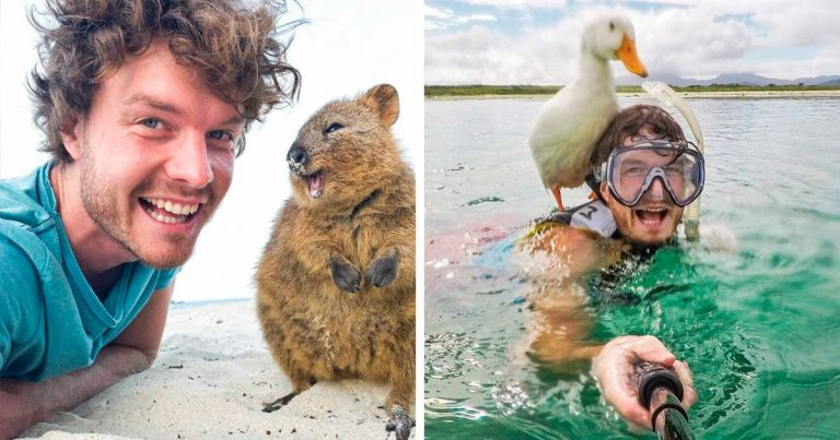 This Man Can Befriend Every Animal He Meets