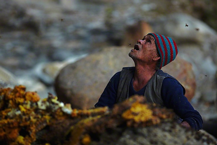 Honey-hunting tradition in Nepal