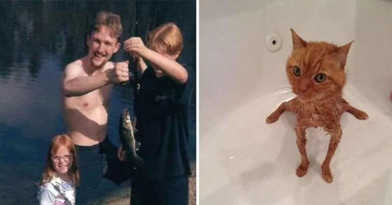 These 15 Pictures Will Totally Confuse You