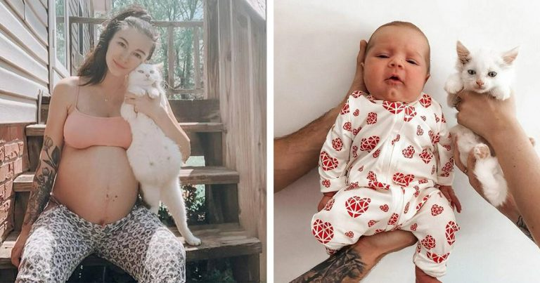 Pregnant Woman Fosters Pregnant Stray Cat And Both Give Birth At The Same Time